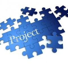 إدارة المشروعات الخصائص والمخاطر