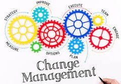 قراءة في مقالة حول  إدارة التغيير الرشيق Agile Change Management