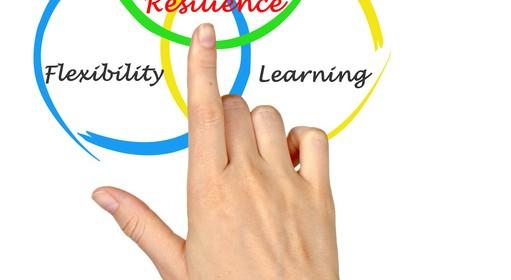 المرونة التنظيمية Organizational Resilience