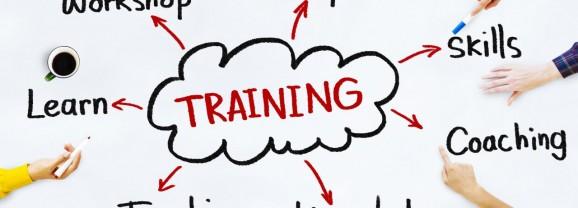 المنظومة التدريبية  ومتطلبات  النجاح