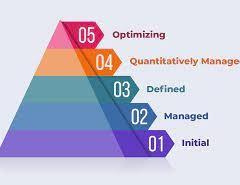 قياس النضج المؤسسي ونجاح تنفيذ الاستراتيجية Measuring Maturity
